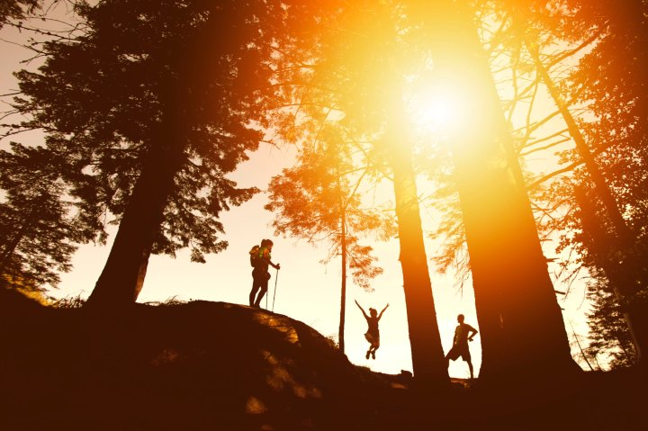 3 people walking in the woods with the sun coming through the trees